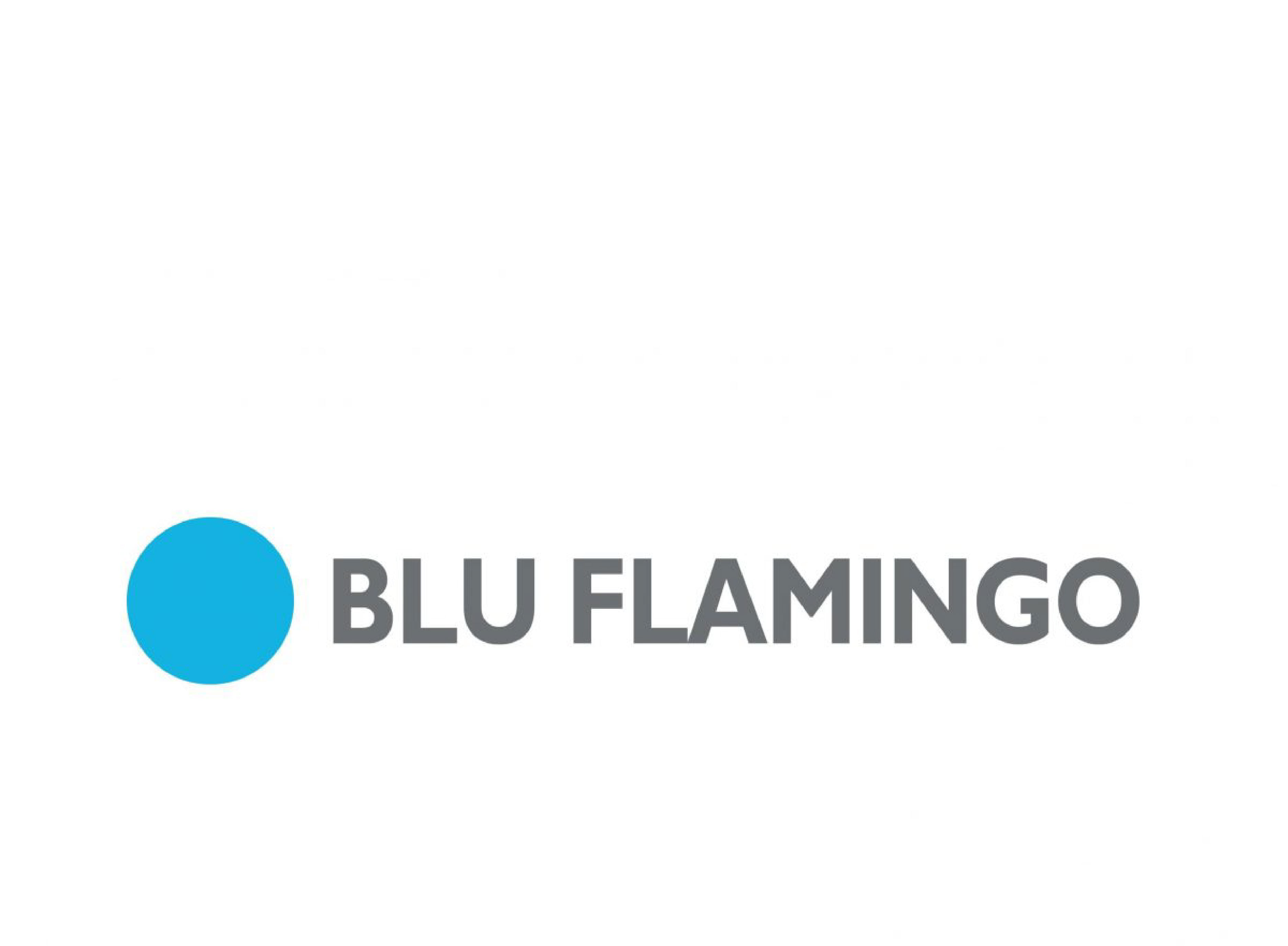 tactive consulting - blu flamingo resize 3