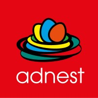tactive consulting - adnest